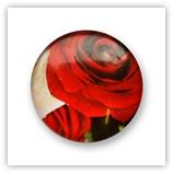 Cabochon 20 mm fleurs - 313